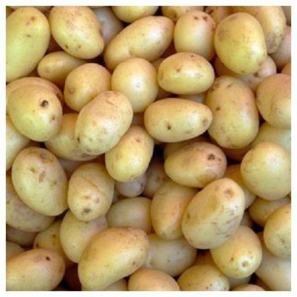 Baby zemiaky